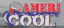 Americool Air Conditioning & Heating Inc